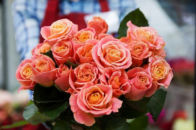 růžové potěšení